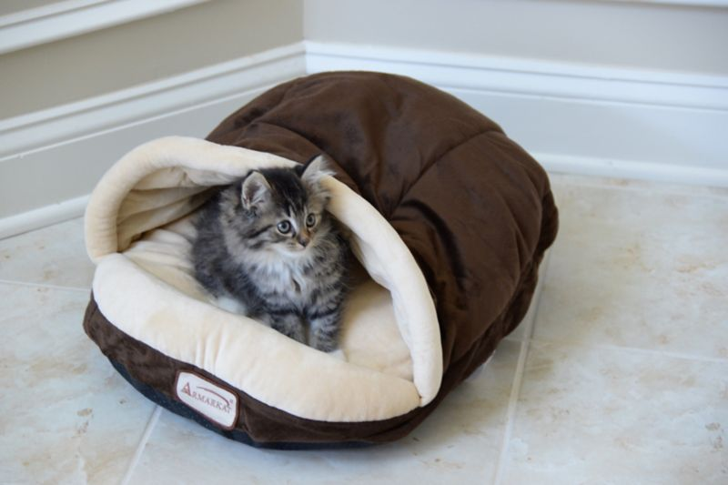 Armarkat C05HKF/MH Slipper Shape Pet Bed