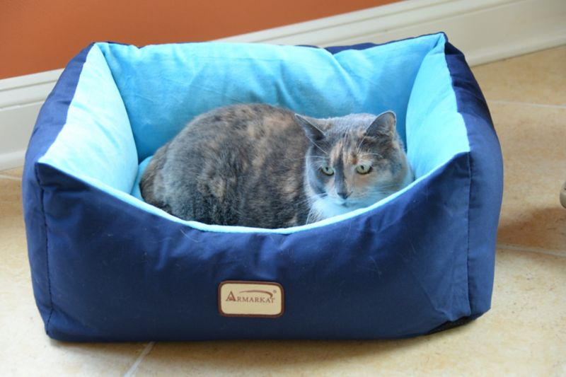 Canvas and Velvet Pet Bed