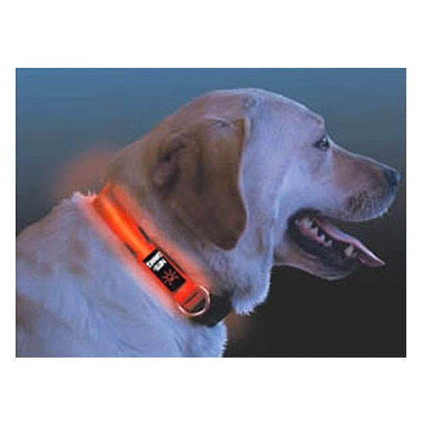 Nite Ize Nite Dawg LED Dog Collar Medium