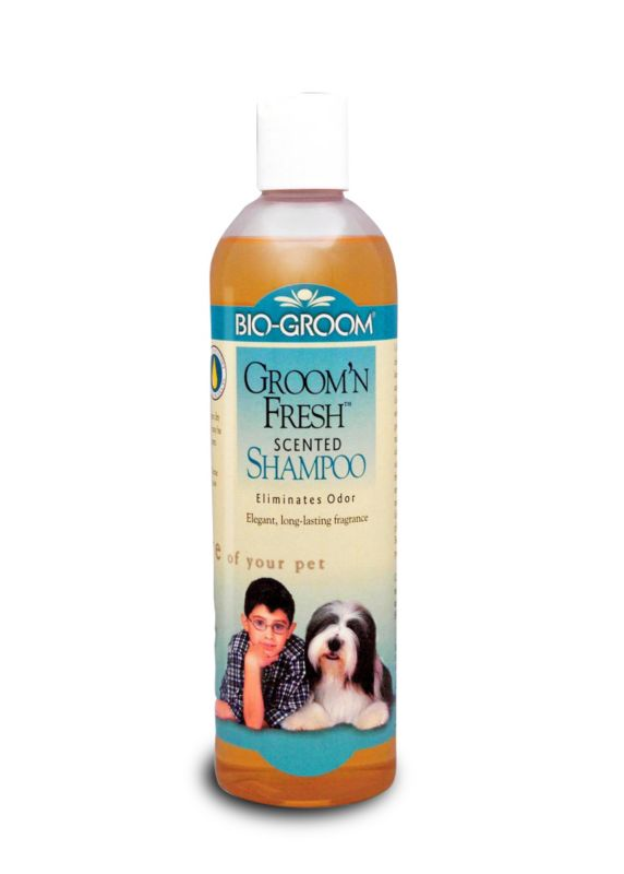 Bio-Groom Groom N Fresh Dog Shampoo 12oz