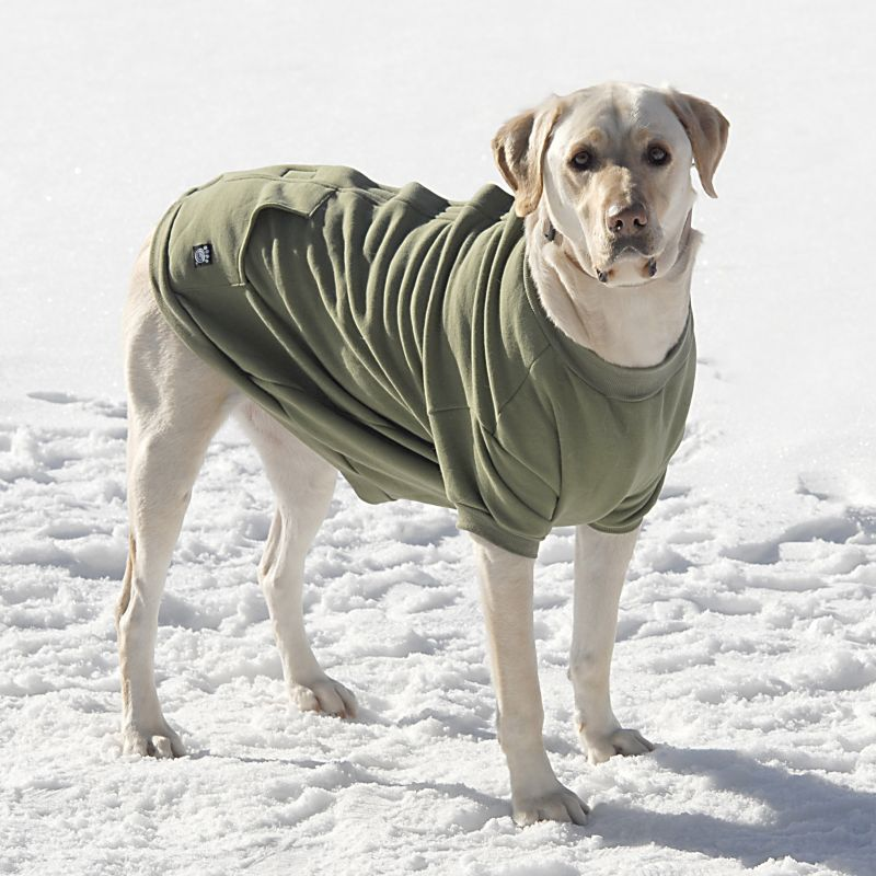 Barkleys Dog Sweatshirt Medium Green Best Price