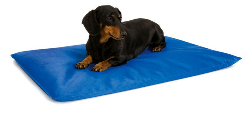 Cool Bed 3 Blue Cooling Pet Bed Large