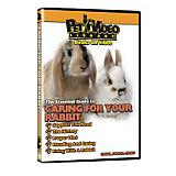 Caring For Your Small Pet DVD