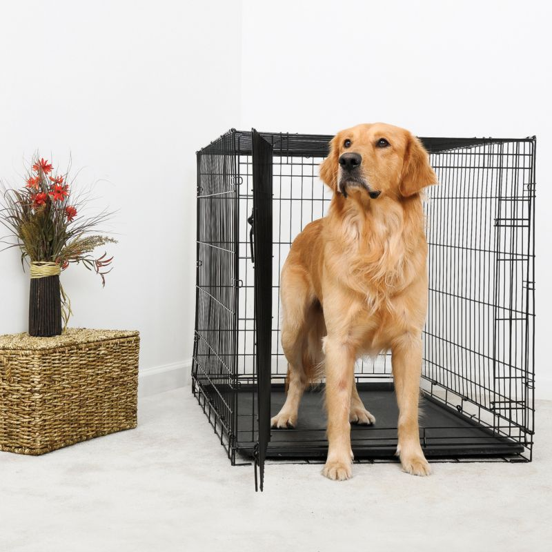 DuraCrate Folding Dog Crate 30Lx19Wx21H