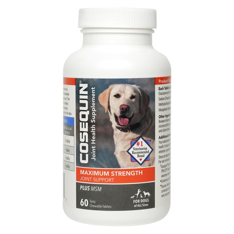 Cosequin DS Plus MSM Chewable Tablet Supplement
