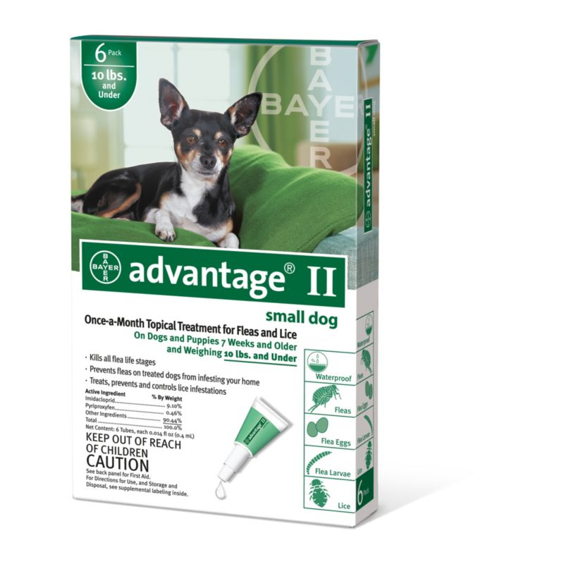 Advantage II for Dogs 12 Month Supply 1-10lb