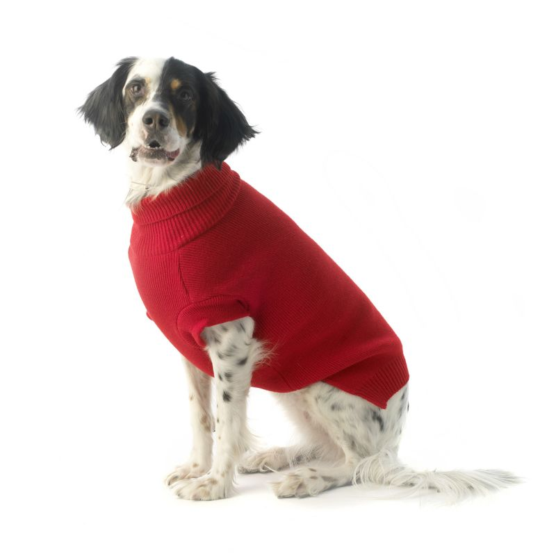 Baxters Dog Sweater Small Plum