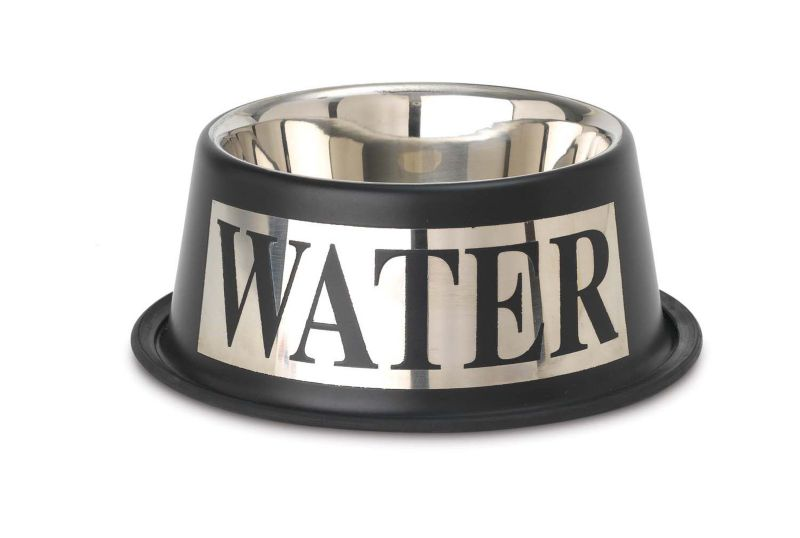 Antigua Non Slip Stainless Steel Dog Bowl Water Best Price