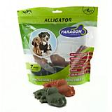 Paragon Alligator Dental Dog Chew