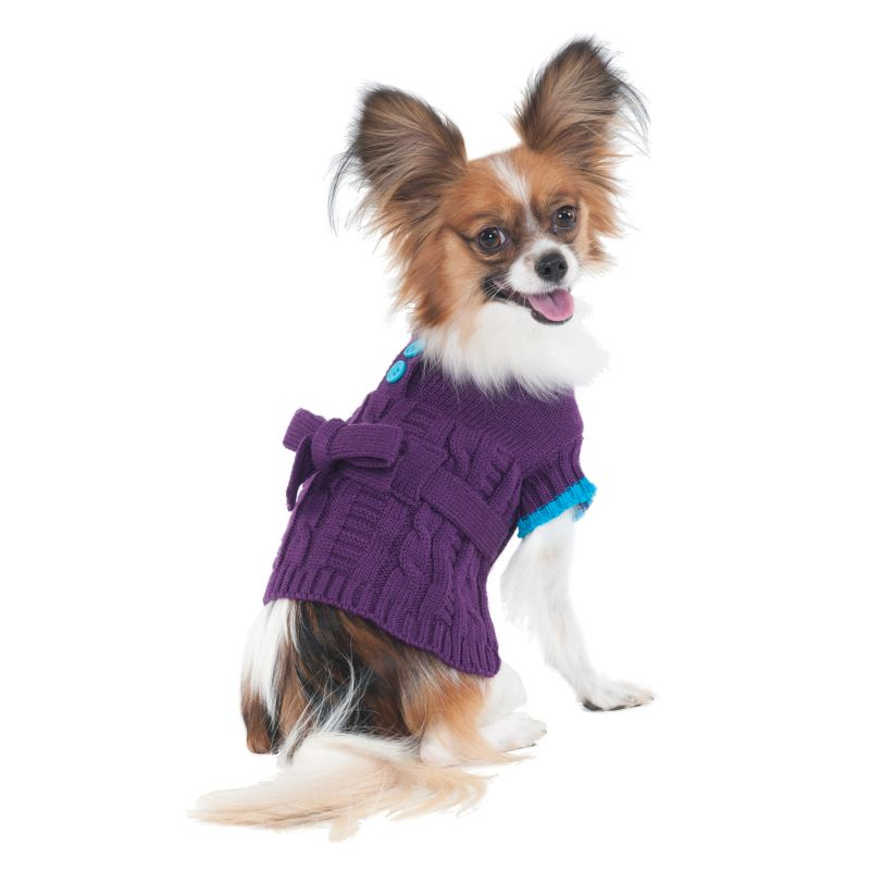 Fashion Pet Sorority Girl Dog Dress X-Small