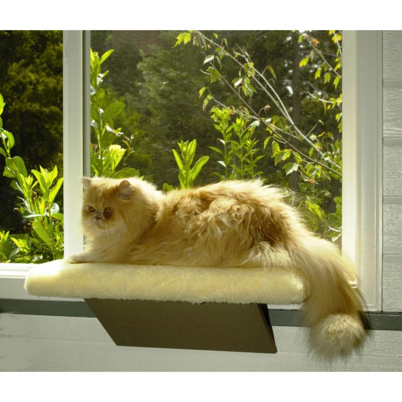 Comfort Window Perch Cat Bed