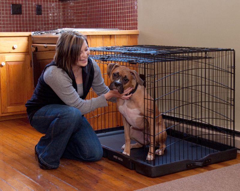 Travel Lite Steel Dog Crate 27 Inch Black