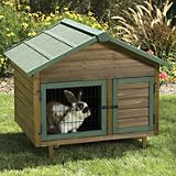 Precision Pet Rabbit Multi-Plex Hutch
