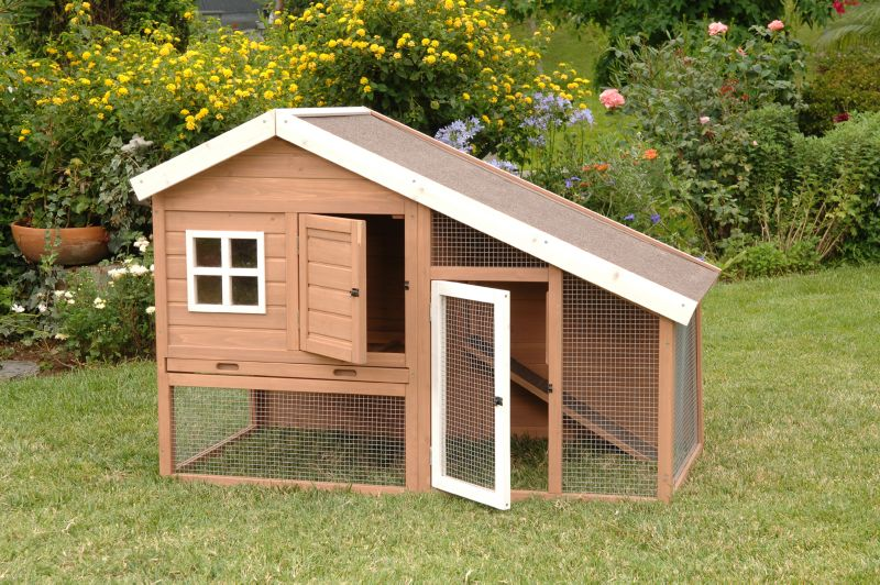 Petco Coupons for Precision Pet Cape Cod Chicken Coop or