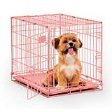 Midwest Color iCrate Folding Dog Crate