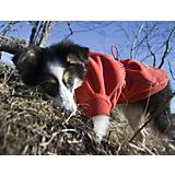Hurtta Waterproof Fleece Dog Jacket