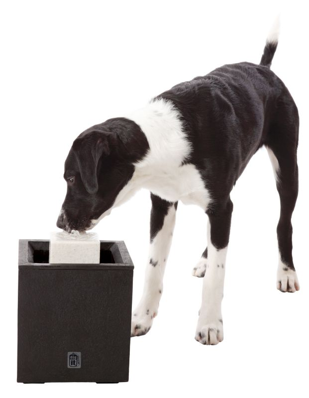 DogIt Alfresco Outdoor Dog Drinking Fountain
