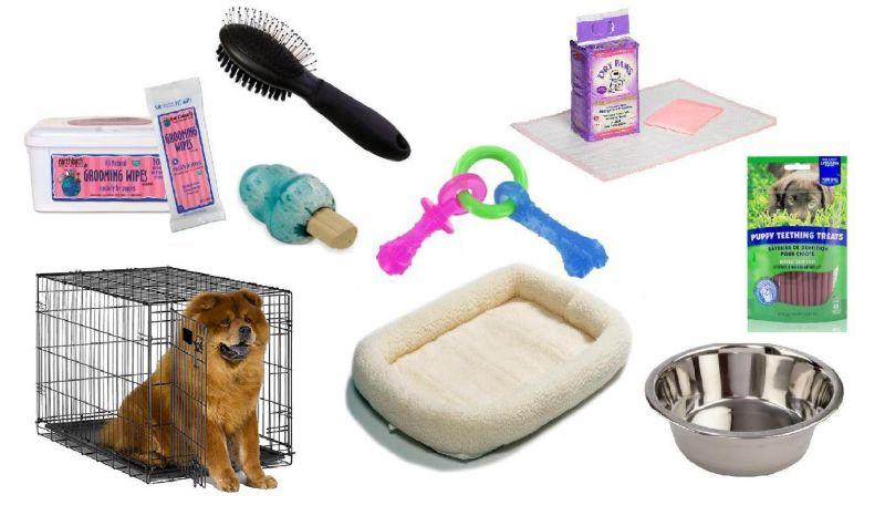 Deluxe Puppy Kit Medium