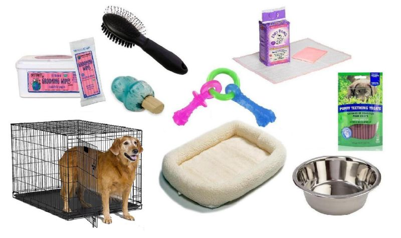 Deluxe Puppy Kit Large