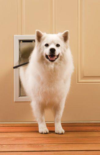 PetsSafe Freedom Aluminum Pet Door Medium