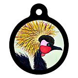 Exotic Bird Cat ID Tag