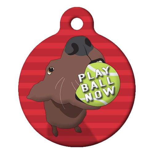 Play Ball Now Pet ID Tag Small