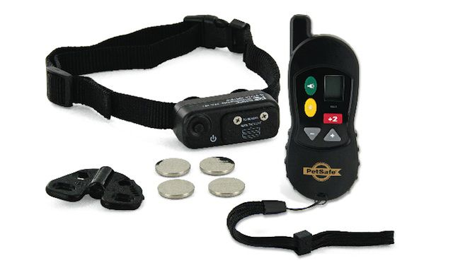 PetSafe Little Dog Remote Trainer Dog Collar