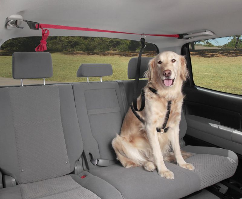 Solvit PupZip Vehicle Zipline for Pets