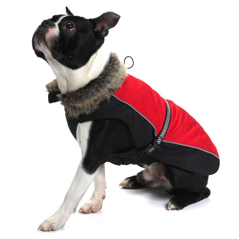 Dog Smart Aspen Dog Parka 12IN Scarlet
