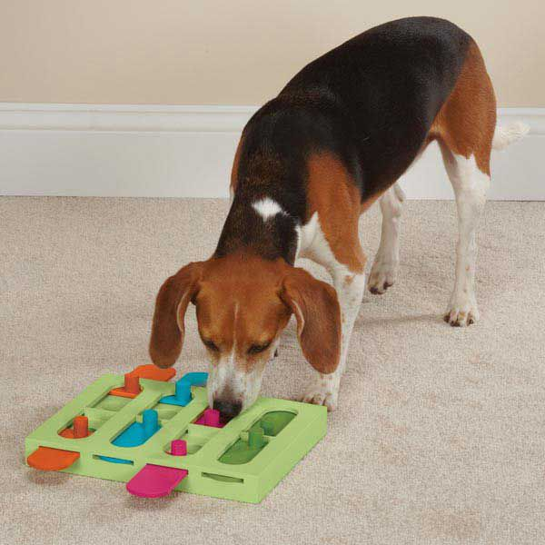 Zanies Treat Hunter Puzzle Dog Toy
