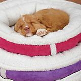 Slumber Pet Bright Sherpa Donut Dog Bed