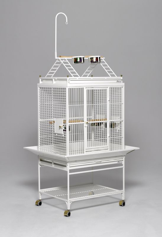 Avian Adventures Chiquita Playtop Bird Cage White