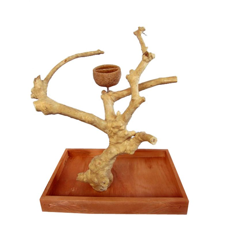 Java Wood Table Top Bird Play Stand Small