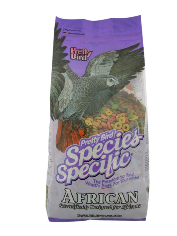 Pretty Bird African Species Bird Food Best Price