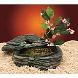 Penn Plax Herp Haven Reptile Hideaway