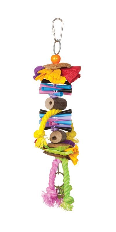 Tropical Teasers Party Time Bird Toy