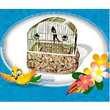 JT Bird Seed Catcher