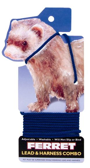 Coastal Pet Ferret Harness and Lead Black Best Price