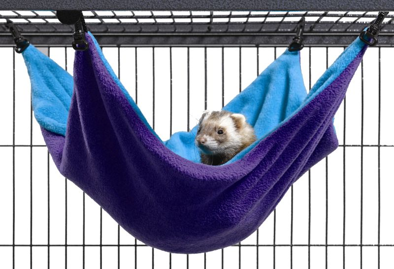 Ferret Nation Ferret Hammock Large