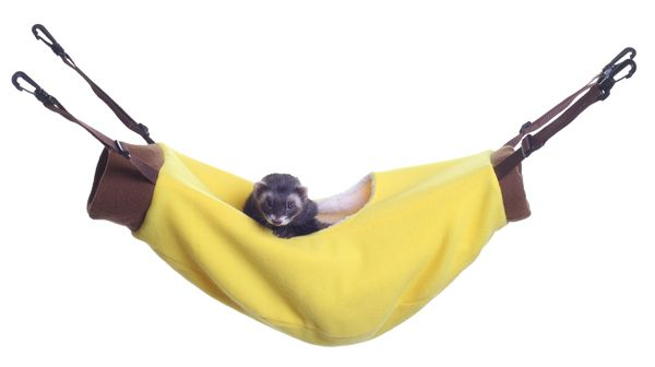 Marshall Ferret Banana Hammock Best Price