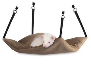 Lazy Ferret Sleeper Hammock
