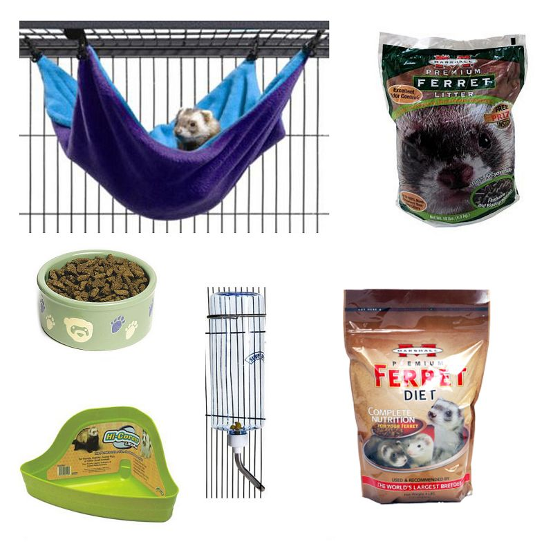 Basic Ferret Starter Kit