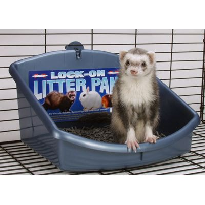 Marshall Ferret Litter Pan Hi-Back