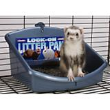 Marshall Ferret Litter Pan