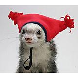 Marshall Ferret Tassel Hat