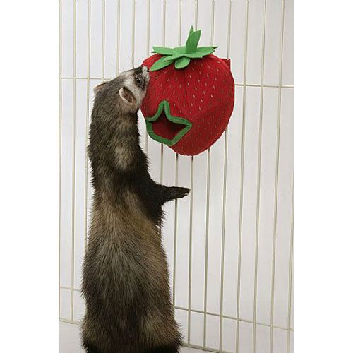 Marshall Ferret Plush Strawberry Treat Holder