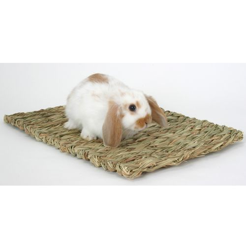 Peters Rabbit Grass Mat