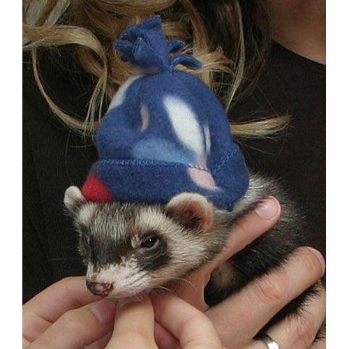 Marshall Ferret Winter Cap