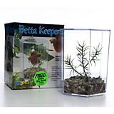 Lee's Aquarium Betta Hex Tank w/ Plant & Gravel