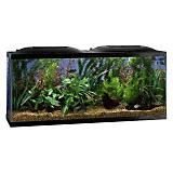 Marineland LED Aquarium Kit